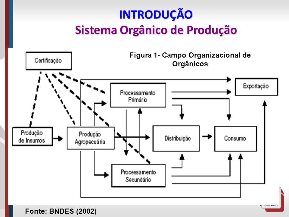 INTRODUÇÃO Sistema Orgânico de Produção Fonte: BNDES (2002) Figura 1- Campo Organizacional de Orgânicos