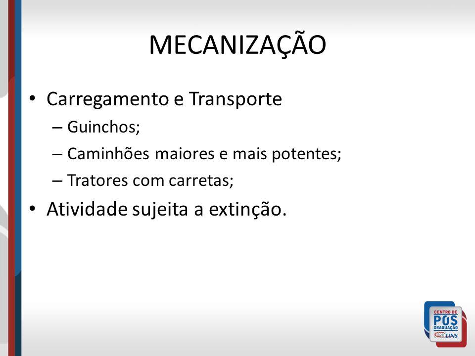MECANIZAÇÃO Carregamento e Transporte – Guinchos; – Caminhões maiores e mais potentes; – Tratores com carretas; Atividade sujeita a extinção.