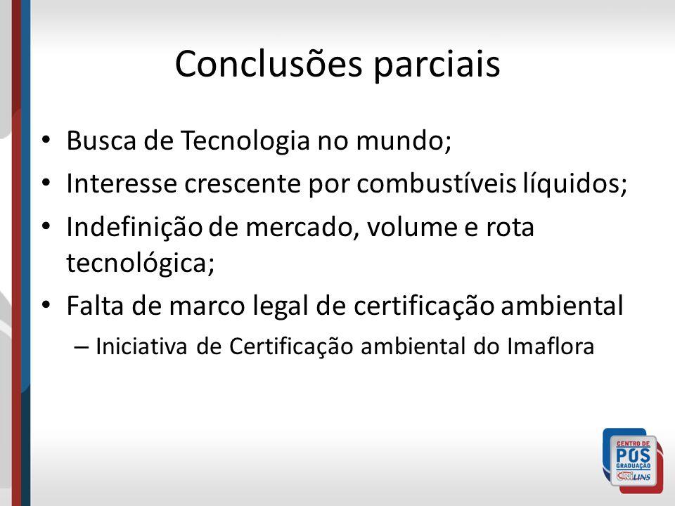 Conclusões parciais Busca de Tecnologia no mundo; Interesse crescente por combustíveis líquidos; Indefinição de mercado, volume e rota tecnológica; Fa
