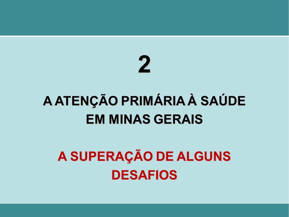 2 A ATENÇÃO PRIMÁRIA À SAÚDE EM MINAS GERAIS A SUPERAÇÃO DE ALGUNS DESAFIOS