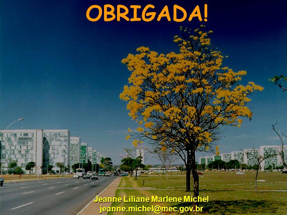 Ministério da Educação OBRIGADA! Jeanne Liliane Marlene Michel jeanne.michel@mec.gov.br