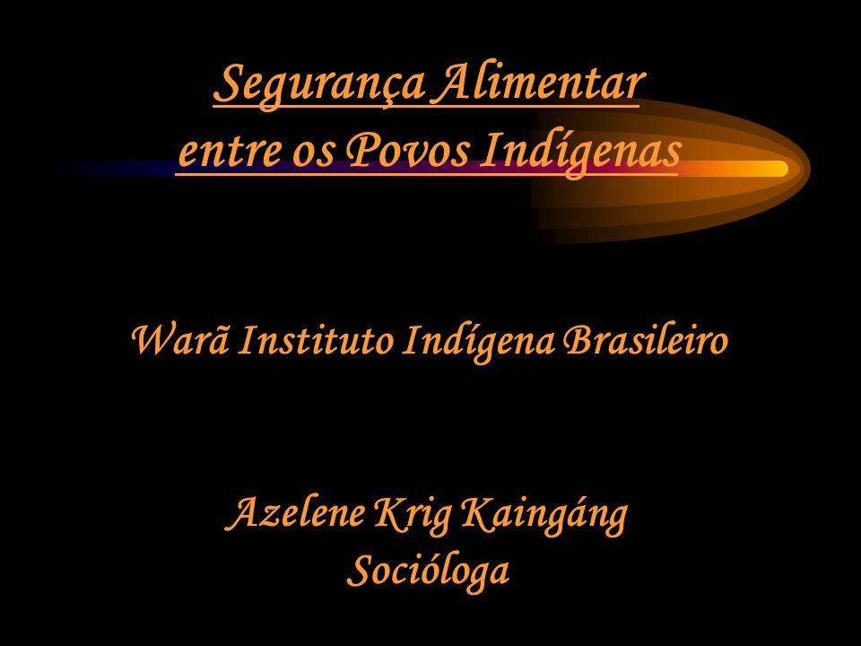 Segurança Alimentar entre os Povos Indígenas Warã Instituto Indígena Brasileiro Azelene Krig Kaingáng Socióloga