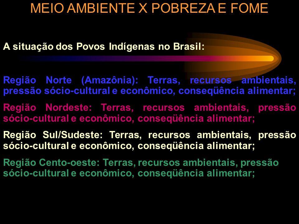 MEIO AMBIENTE X POBREZA E FOME A situação dos Povos Indígenas no Brasil: Região Norte (Amazônia): Terras, recursos ambientais, pressão sócio-cultural