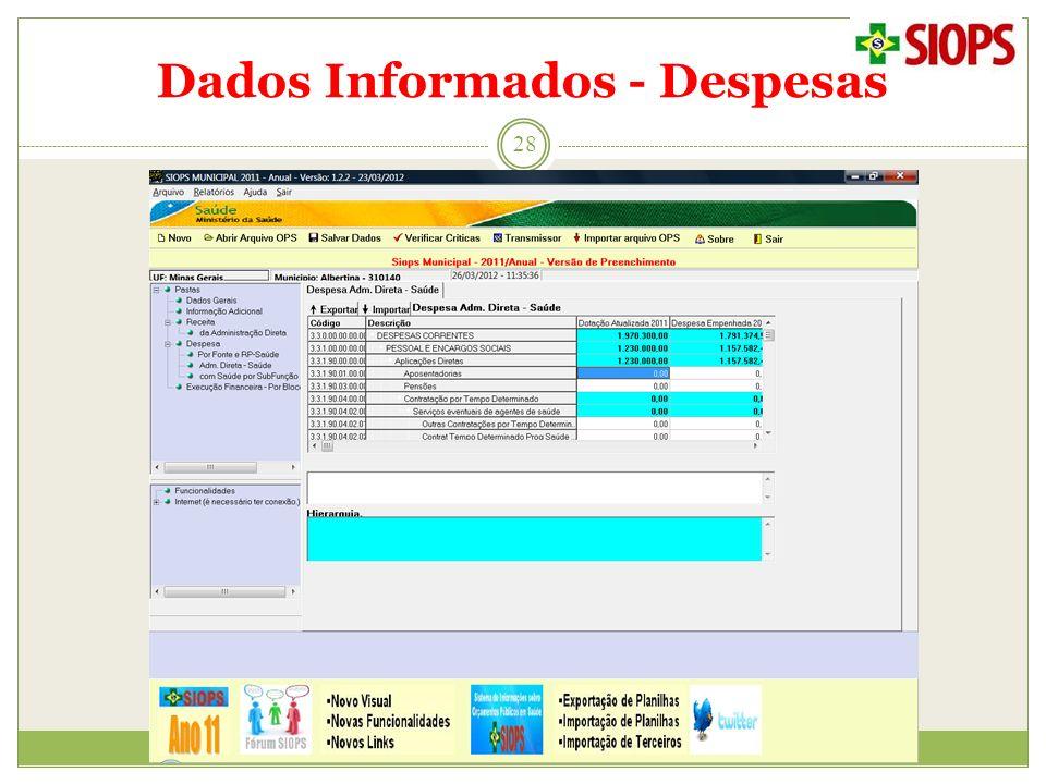 Dados Informados - Despesas 28
