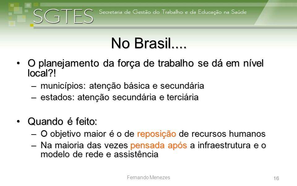 16 Fernando Menezes No Brasil.... O planejamento da força de trabalho se dá em nível local?!O planejamento da força de trabalho se dá em nível local?!