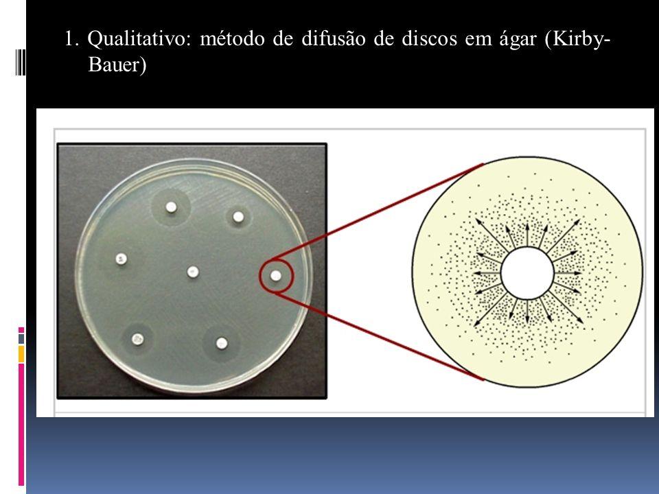 1. Qualitativo: método de difusão de discos em ágar (Kirby- Bauer)
