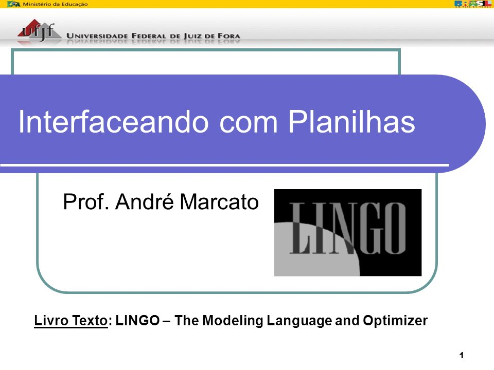 1 Interfaceando com Planilhas Prof. André Marcato Livro Texto: LINGO – The Modeling Language and Optimizer