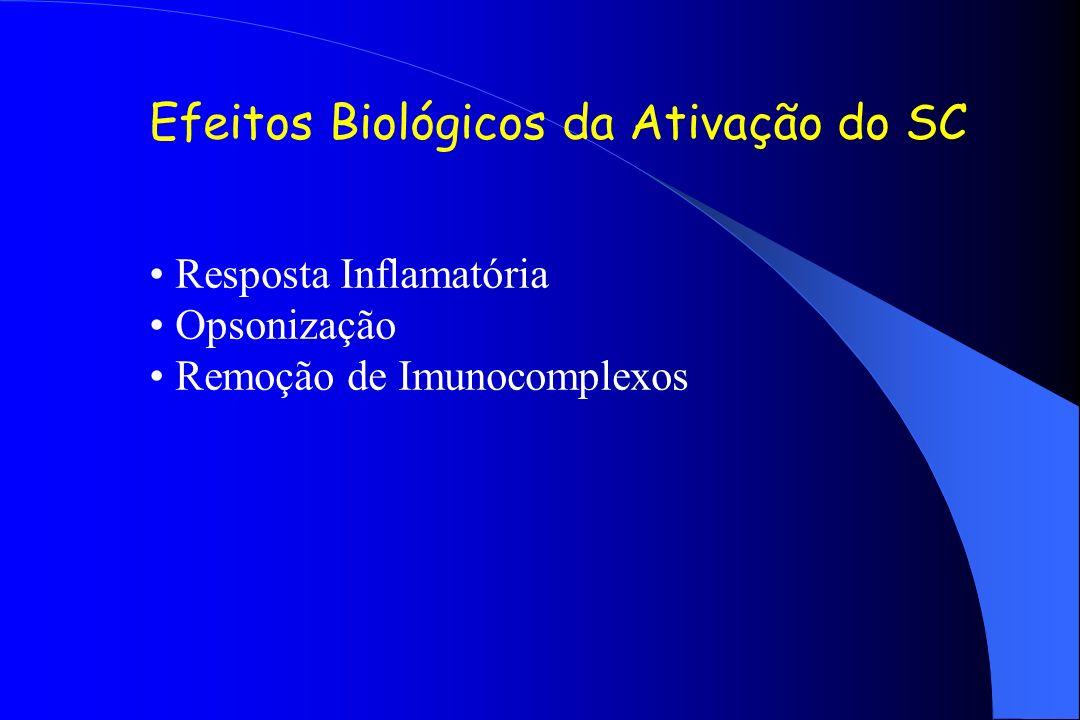 Efeitos Biológicos da Ativação do SC Resposta Inflamatória Opsonização Remoção de Imunocomplexos