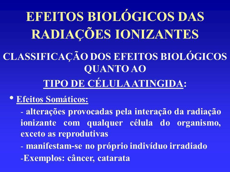 EFEITOS BIOLÓGICOS DAS RADIAÇÕES IONIZANTES CLASSIFICAÇÃO DOS EFEITOS BIOLÓGICOS QUANTO AO TIPO DE CÉLULA ATINGIDA: Efeitos Somáticos: - alterações pr