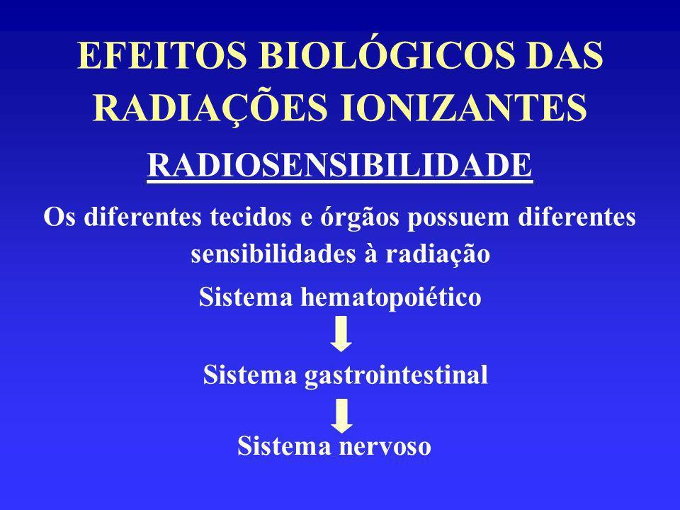 EFEITOS BIOLÓGICOS DAS RADIAÇÕES IONIZANTES RADIOSENSIBILIDADE Os diferentes tecidos e órgãos possuem diferentes sensibilidades à radiação Sistema hem