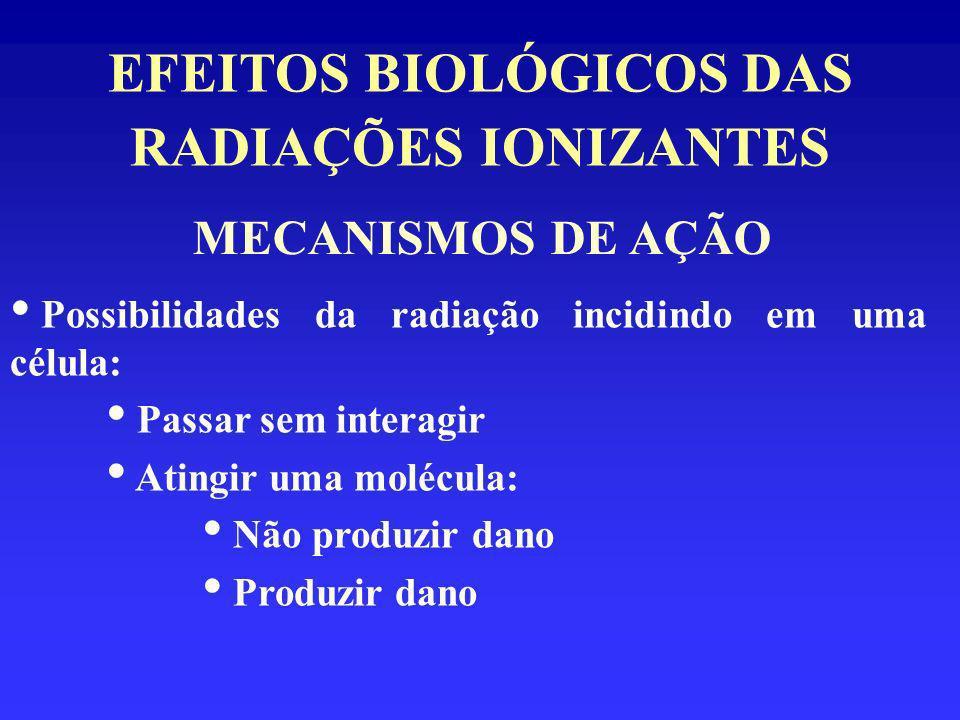 EFEITOS BIOLÓGICOS DAS RADIAÇÕES IONIZANTES Possibilidades da radiação incidindo em uma célula: - Atingir uma molécula: - Produzir dano: Reversível Irreversível Pode ou não levar à indução de efeito biológico morte celular reprodução - perpetuação do dano MECANISMOS DE AÇÃO