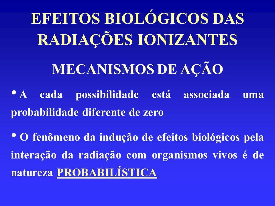 EFEITOS BIOLÓGICOS DAS RADIAÇÕES IONIZANTES CLASSIFICAÇÃO DOS EFEITOS BIOLÓGICOS QUANTO AO TEMPO DE MANIFESTAÇÃO: Efeitos Tardios: - característicos de exposições a pequenas doses - manifestam-se em anos ou dezenas de anos (seres humanos) - Exemplo: câncer