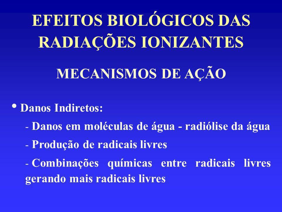 EFEITOS BIOLÓGICOS DAS RADIAÇÕES IONIZANTES MECANISMOS DE AÇÃO Danos Indiretos: - Danos em moléculas de água - radiólise da água - Produção de radicai