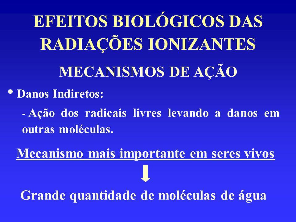 EFEITOS BIOLÓGICOS DAS RADIAÇÕES IONIZANTES MECANISMOS DE AÇÃO Danos Indiretos: - Ação dos radicais livres levando a danos em outras moléculas. Mecani