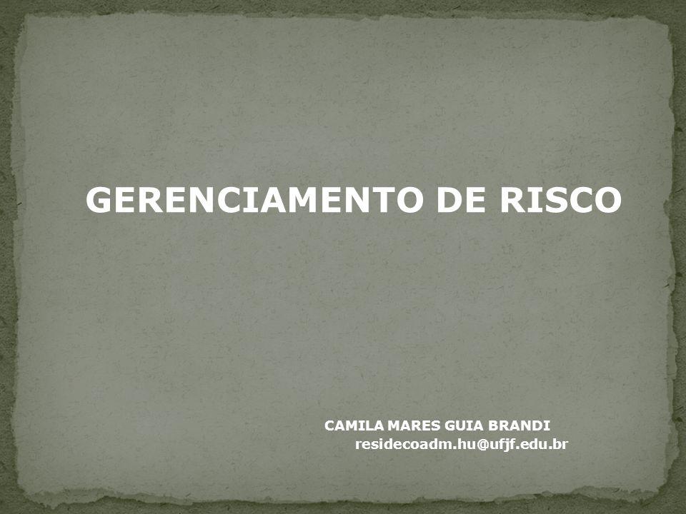 GERENCIAMENTO DE RISCO CAMILA MARES GUIA BRANDI residecoadm.hu@ufjf.edu.br