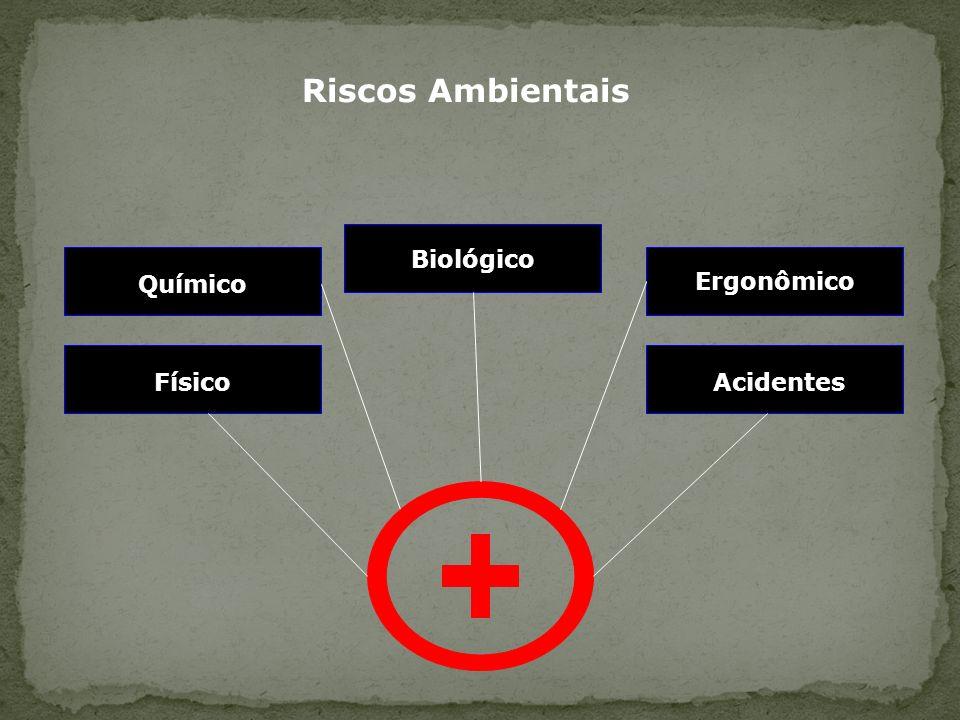 Químico Acidentes Ergonômico Biológico Riscos Ambientais Físico