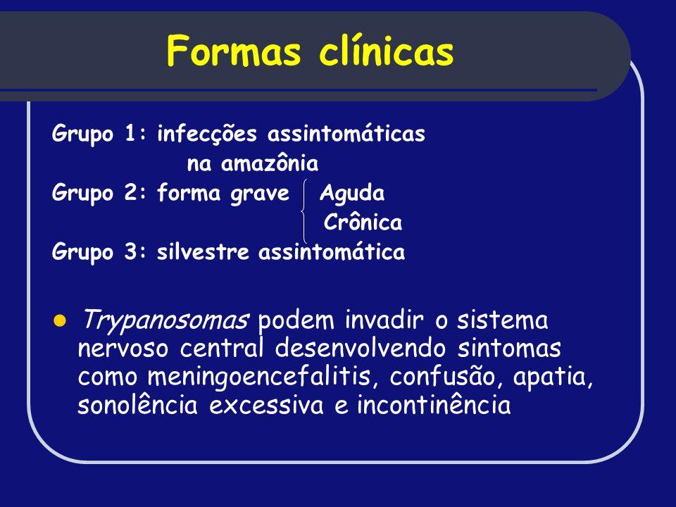 Formas clínicas Grupo 1: infecções assintomáticas na amazônia Grupo 2: forma grave Aguda Crônica Grupo 3: silvestre assintomática Trypanosomas podem i
