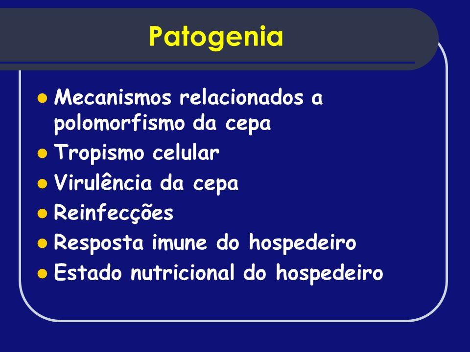 Patogenia Mecanismos relacionados a polomorfismo da cepa Tropismo celular Virulência da cepa Reinfecções Resposta imune do hospedeiro Estado nutricion