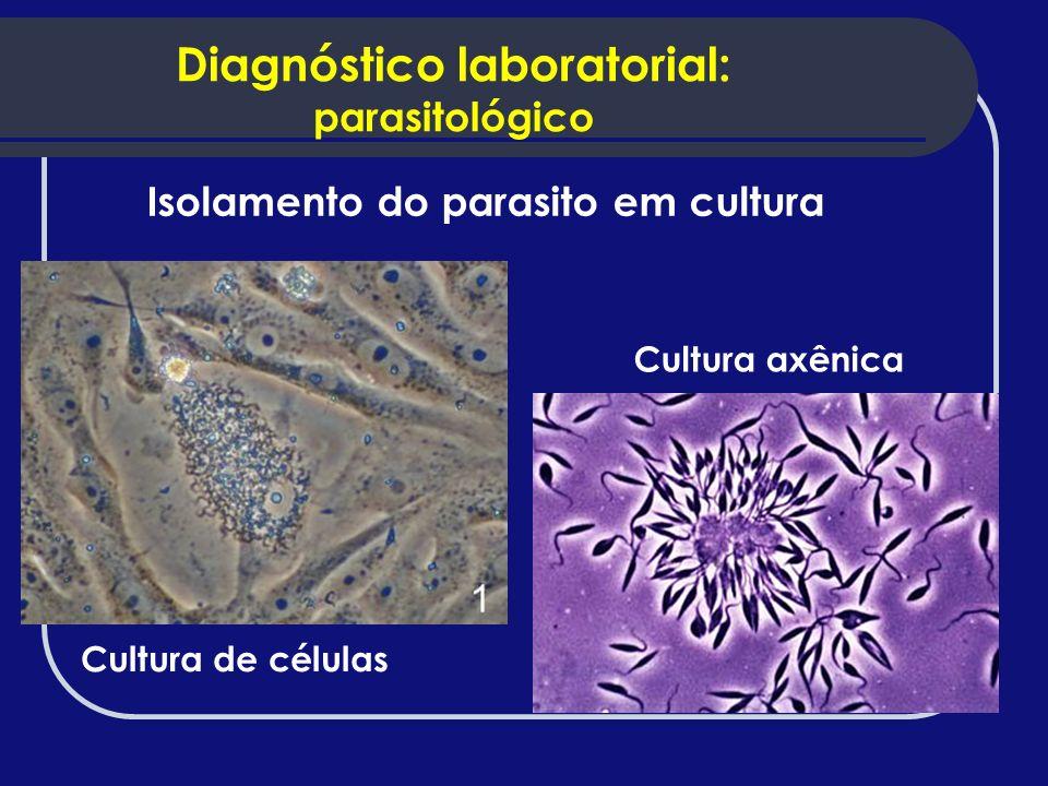Isolamento do parasito em cultura Cultura de células Cultura axênica Diagnóstico laboratorial: parasitológico