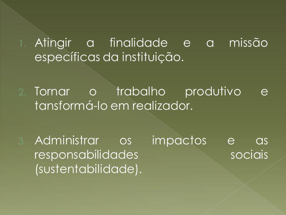 1. Atingir a finalidade e a missão específicas da instituição. 2. Tornar o trabalho produtivo e tansformá-lo em realizador. 3. Administrar os impactos