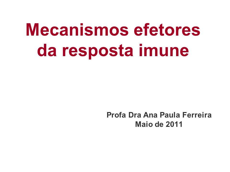 Mecanismos efetores da resposta imune Profa Dra Ana Paula Ferreira Maio de 2011