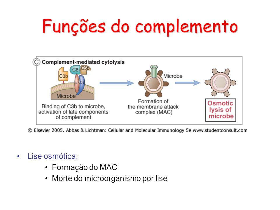 Funções do complemento Lise osmótica: Formação do MAC Morte do microorganismo por lise