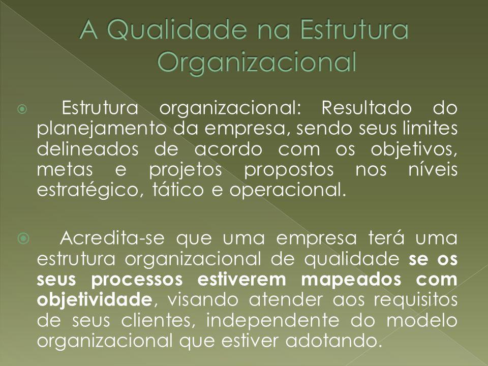 Estrutura organizacional: Resultado do planejamento da empresa, sendo seus limites delineados de acordo com os objetivos, metas e projetos propostos n