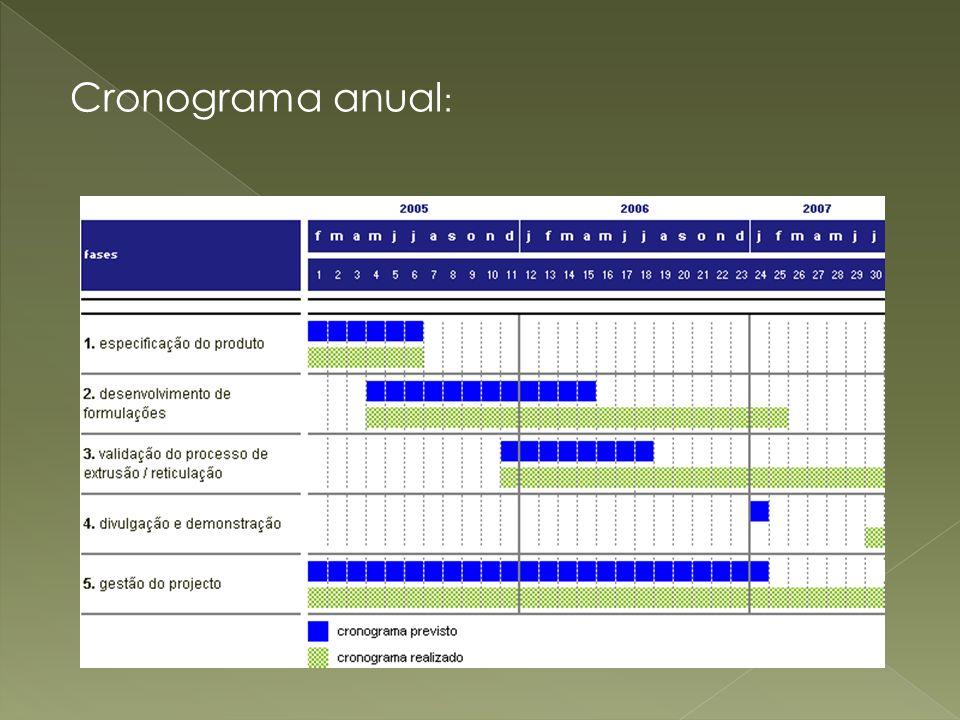 Cronograma anual :