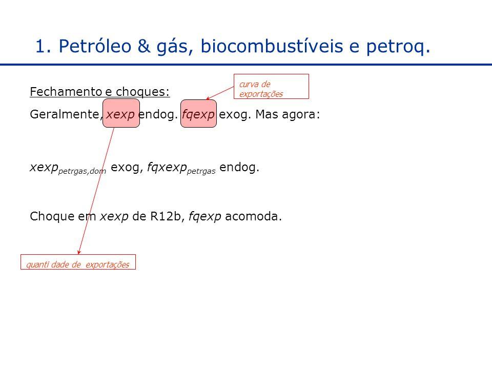 1.Petróleo & gás, biocombustíveis e petroq. Fechamento e choques: Geralmente, xexp endog.