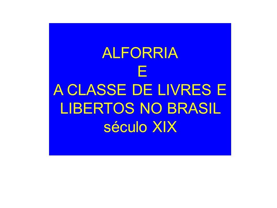 ALFORRIA E A CLASSE DE LIVRES E LIBERTOS NO BRASIL século XIX