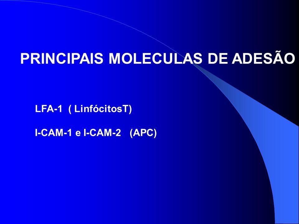 PRINCIPAIS MOLECULAS DE ADESÃO LFA-1 ( LinfócitosT) I-CAM-1 e I-CAM-2 (APC)