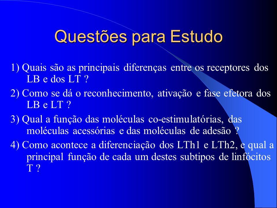 Questões para Estudo 1) Quais são as principais diferenças entre os receptores dos LB e dos LT ? 2) Como se dá o reconhecimento, ativação e fase efeto