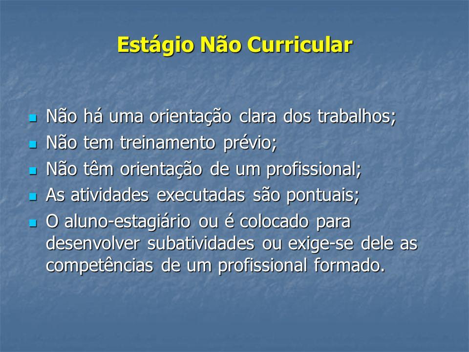 Estágio Não Curricular Não há uma orientação clara dos trabalhos; Não há uma orientação clara dos trabalhos; Não tem treinamento prévio; Não tem trein