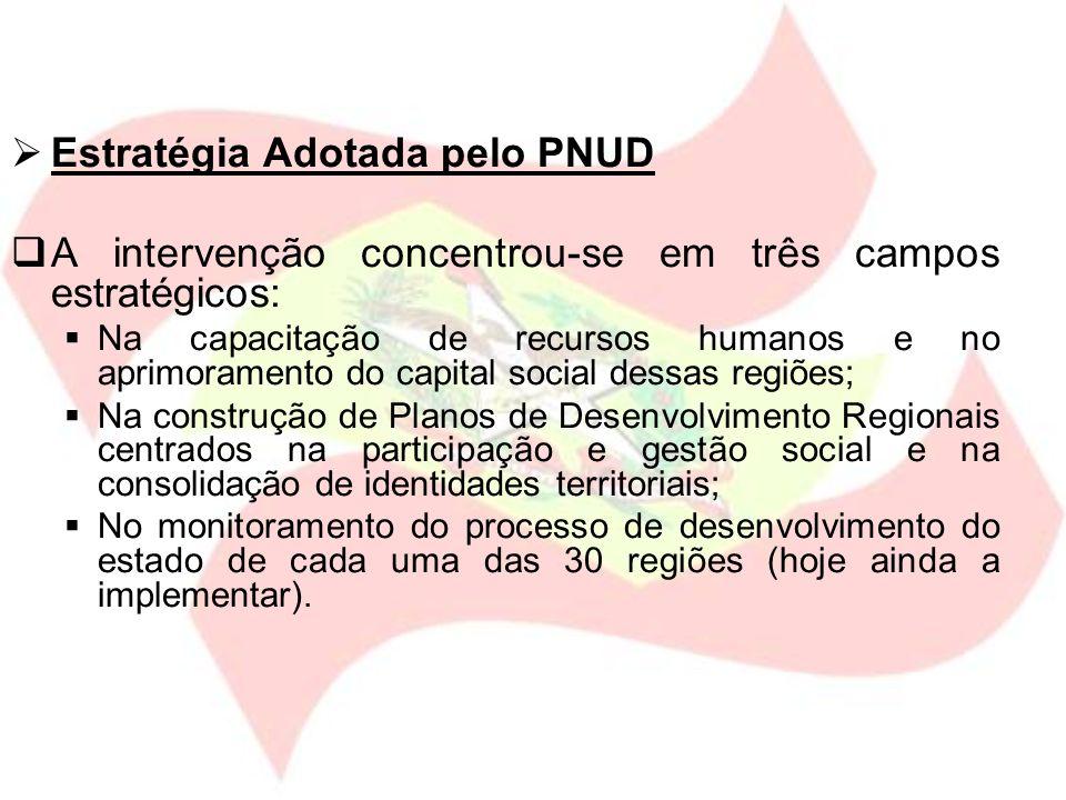 Estratégia Adotada pelo PNUD A intervenção concentrou-se em três campos estratégicos: Na capacitação de recursos humanos e no aprimoramento do capital