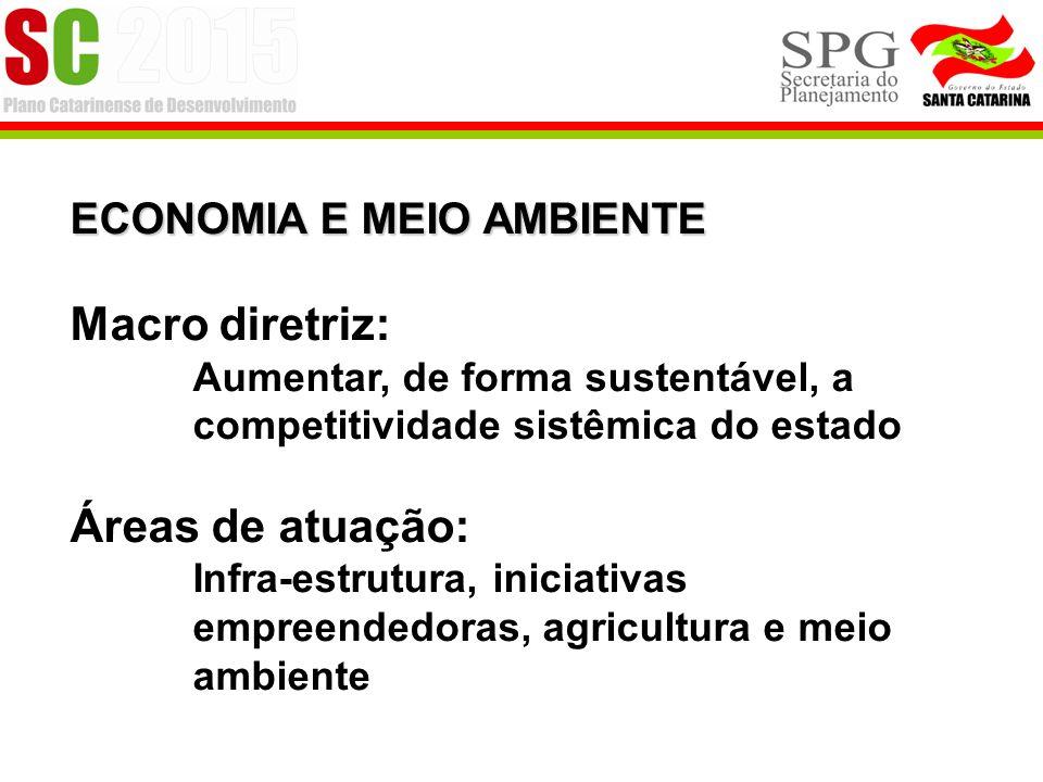 ECONOMIA E MEIO AMBIENTE Macro diretriz: Aumentar, de forma sustentável, a competitividade sistêmica do estado Áreas de atuação: Infra-estrutura, iniciativas empreendedoras, agricultura e meio ambiente