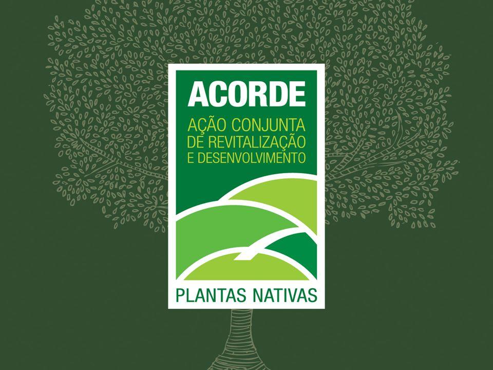HISTÓRICO Concebido como uma Ação Conjunta, coordenada pela Secretaria de Estado do Planejamento, o Projeto ACORDE Plantas Nativas foi elaborado, durante o ano de 2009, com a contribuição das Secretarias de Estado da Agricultura, da Educação, da Segurança Pública (Polícia Ambiental) e do Desenvolvimento Econômico Sustentável, da FATMA, EPAGRI, FAPESC e do Instituto Consultor Social.