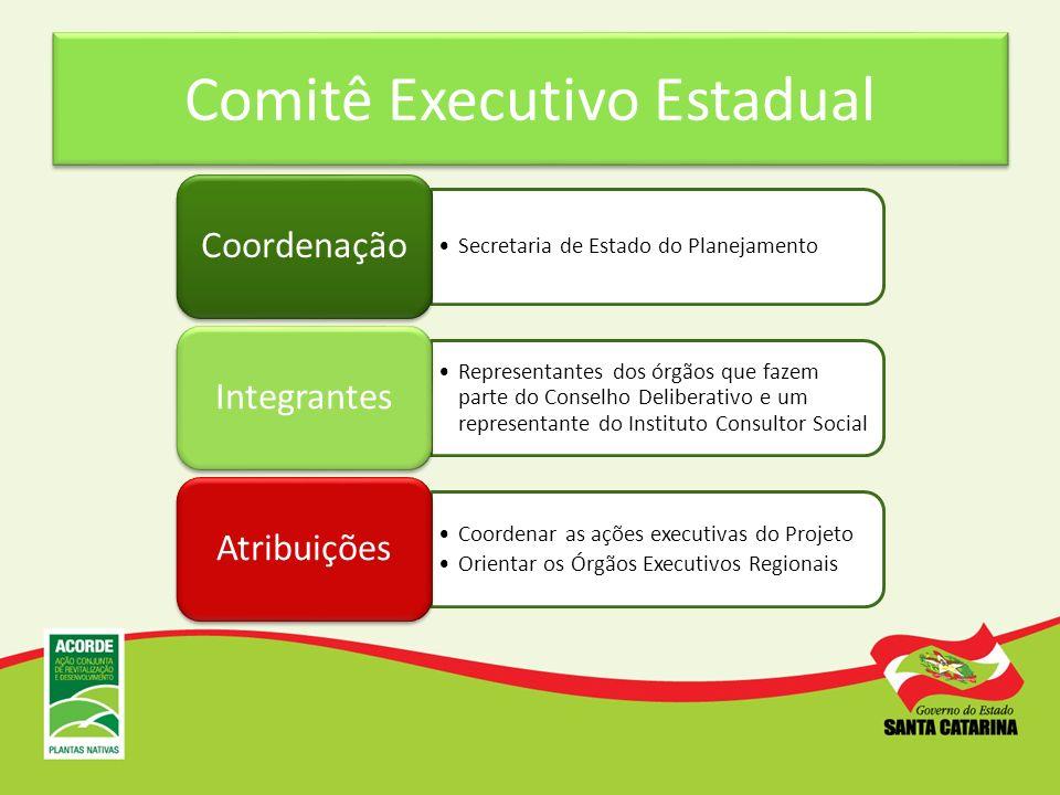 Comitê Executivo Estadual Secretaria de Estado do Planejamento Coordenação Representantes dos órgãos que fazem parte do Conselho Deliberativo e um rep
