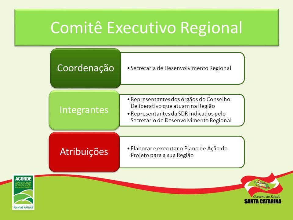 Comitê Executivo Regional Secretaria de Desenvolvimento Regional Coordenação Representantes dos órgãos do Conselho Deliberativo que atuam na Região Re