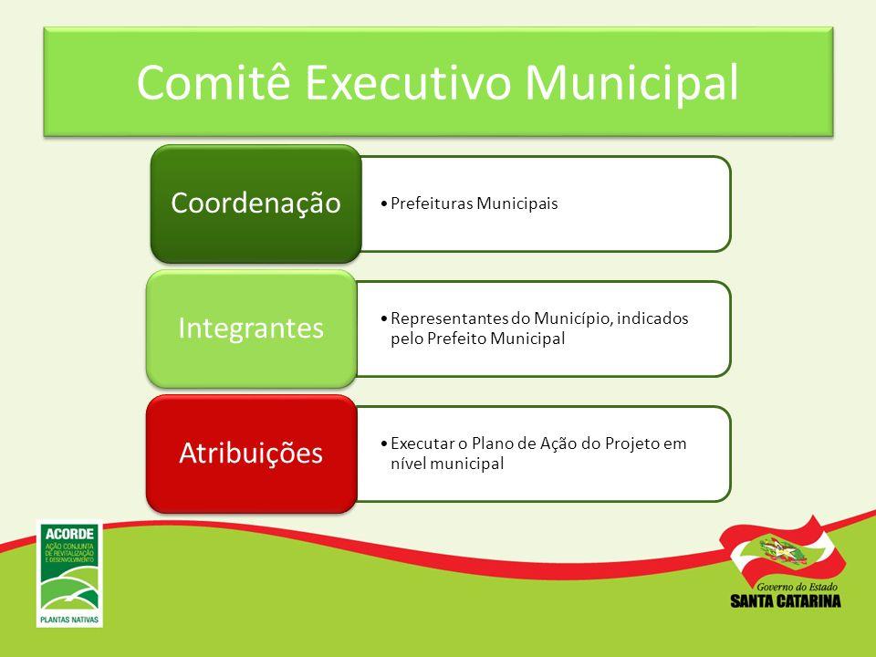 Comitê Executivo Municipal Prefeituras Municipais Coordenação Representantes do Município, indicados pelo Prefeito Municipal Integrantes Executar o Pl