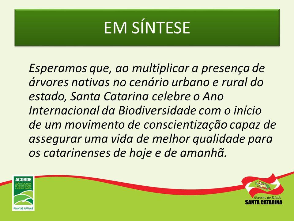 EM SÍNTESE Esperamos que, ao multiplicar a presença de árvores nativas no cenário urbano e rural do estado, Santa Catarina celebre o Ano Internacional