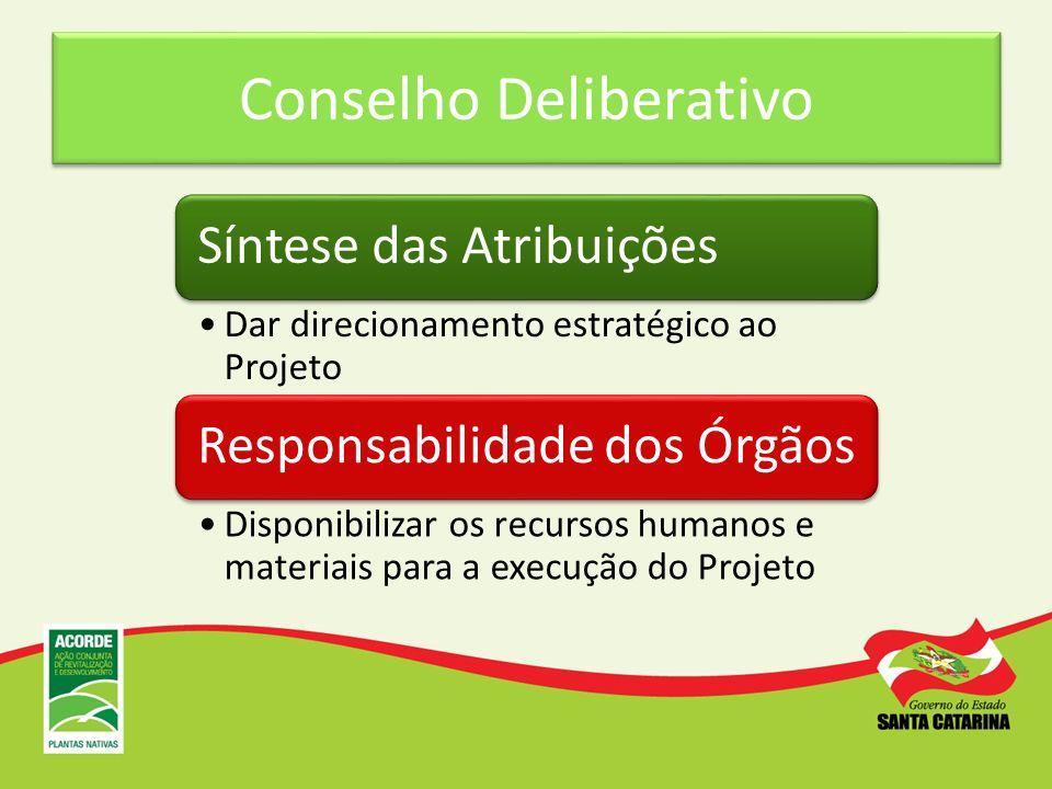 Conselho Deliberativo Síntese das Atribuições Dar direcionamento estratégico ao Projeto Responsabilidade dos Órgãos Disponibilizar os recursos humanos
