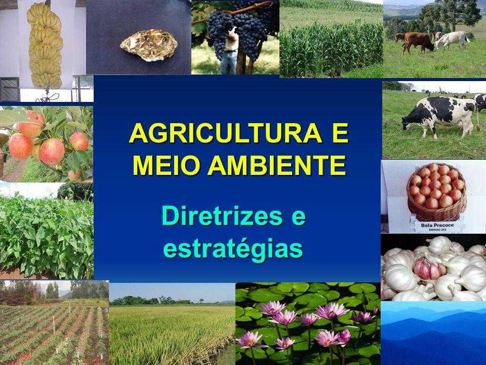 AGRICULTURA E MEIO AMBIENTE 1.