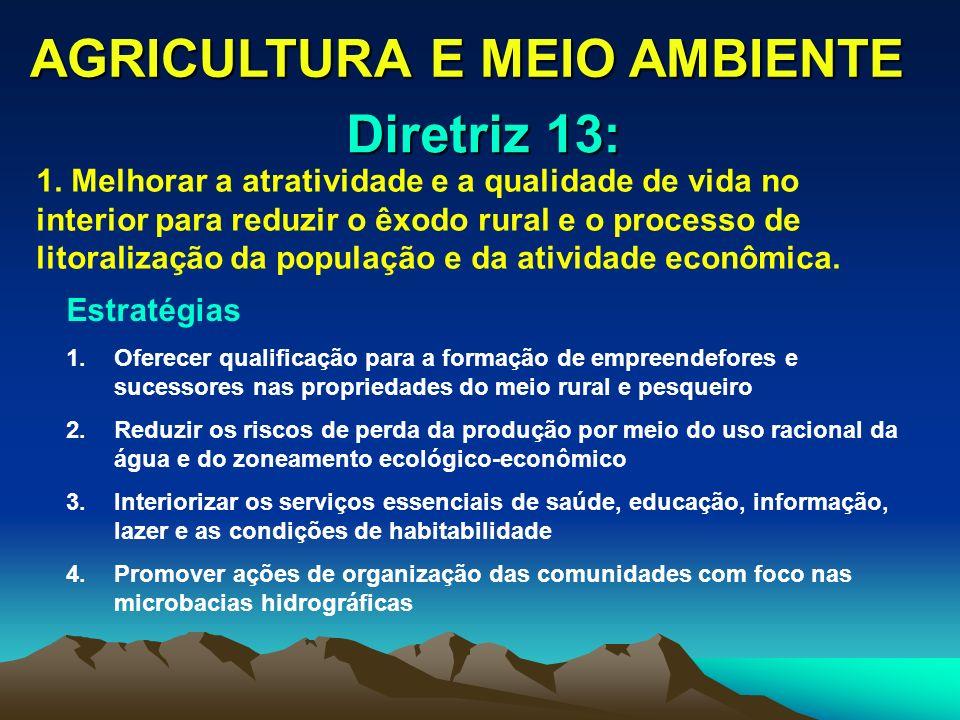 AGRICULTURA E MEIO AMBIENTE 1. Melhorar a atratividade e a qualidade de vida no interior para reduzir o êxodo rural e o processo de litoralização da p