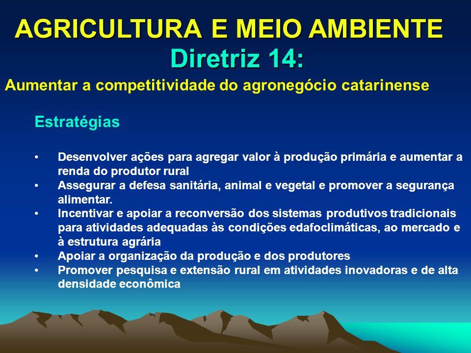 AGRICULTURA E MEIO AMBIENTE Estratégias Desenvolver ações para agregar valor à produção primária e aumentar a renda do produtor rural Assegurar a defe