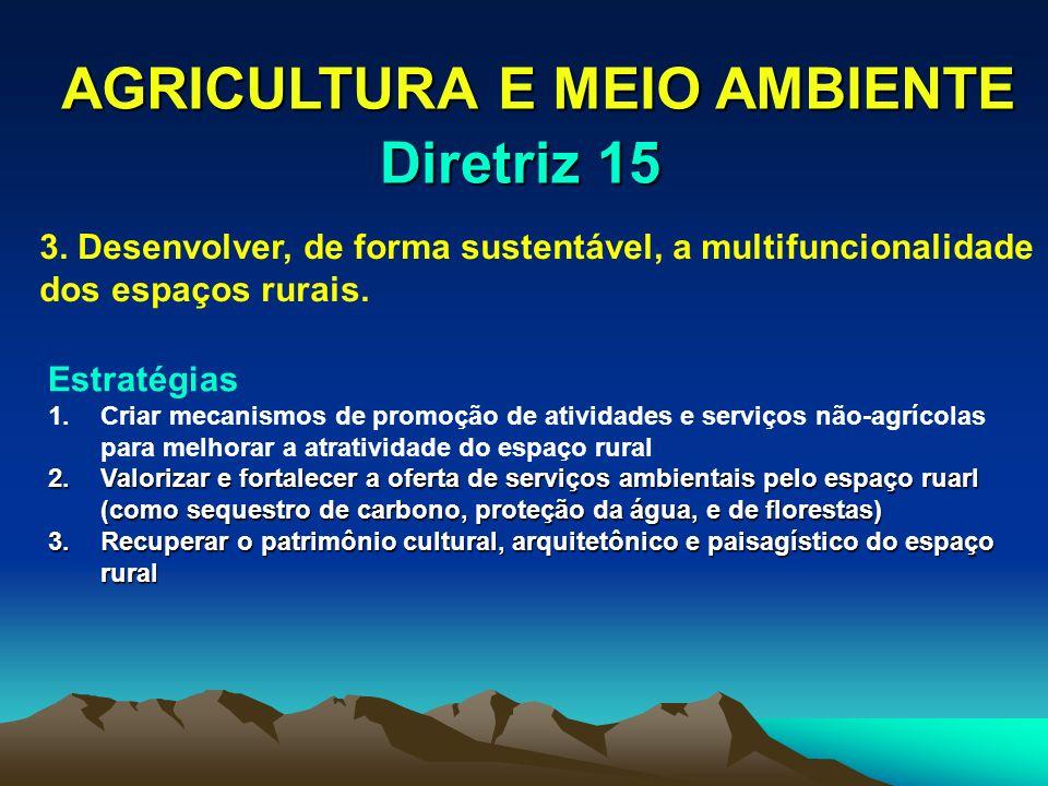 AGRICULTURA E MEIO AMBIENTE 3. Desenvolver, de forma sustentável, a multifuncionalidade dos espaços rurais. Estratégias 1. 1.Criar mecanismos de promo