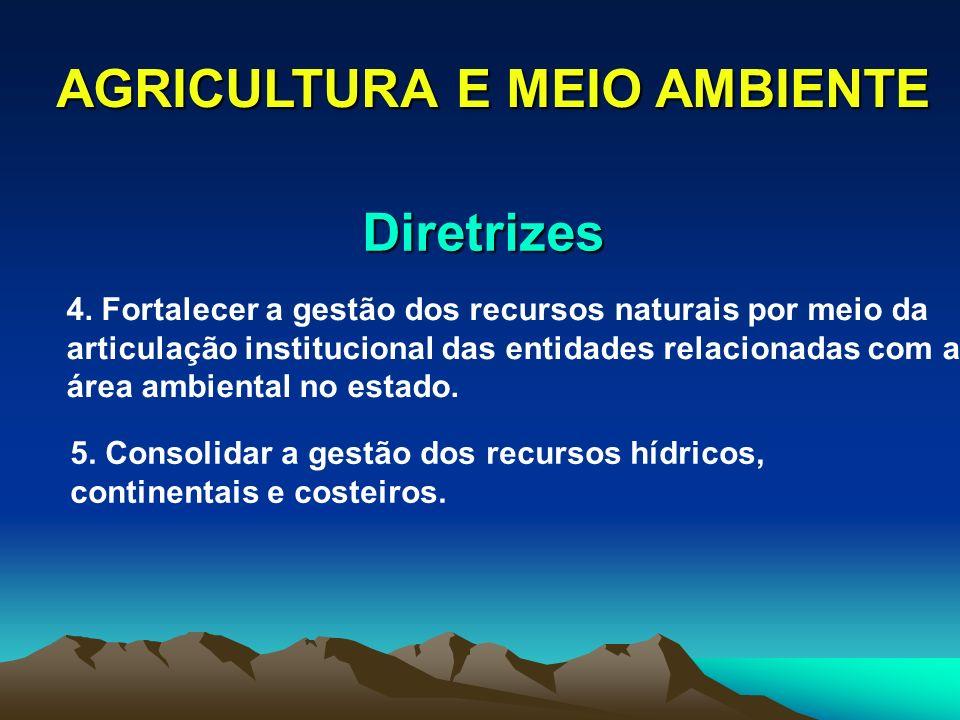 AGRICULTURA E MEIO AMBIENTE Diretrizes 4. Fortalecer a gestão dos recursos naturais por meio da articulação institucional das entidades relacionadas c