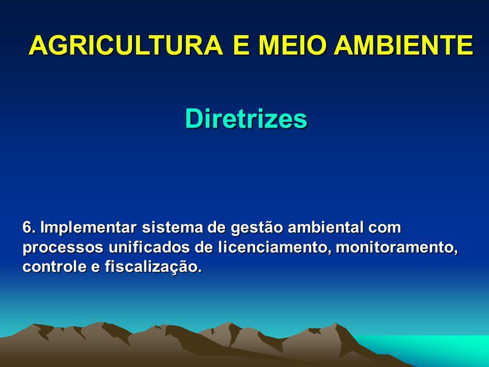 AGRICULTURA E MEIO AMBIENTE 6. Implementar sistema de gestão ambiental com processos unificados de licenciamento, monitoramento, controle e fiscalizaç