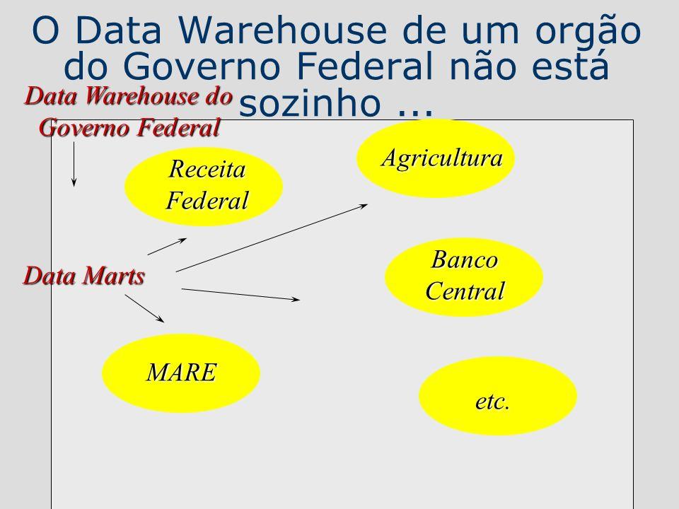 O Data Warehouse de um orgão do Governo Federal não está sozinho... ReceitaFederal Agricultura MARE BancoCentral etc. Data Warehouse do Governo Federa