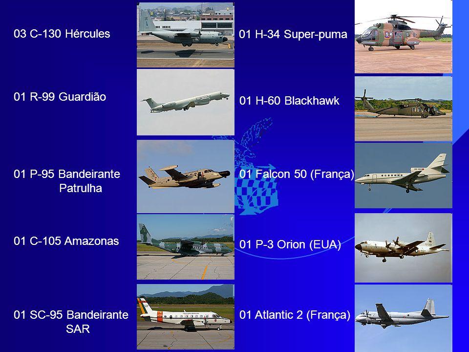 03 C-130 Hércules 01 R-99 Guardião 01 P-95 Bandeirante Patrulha 01 C-105 Amazonas 01 SC-95 Bandeirante SAR 01 H-34 Super-puma 01 H-60 Blackhawk 01 Falcon 50 (França) 01 P-3 Orion (EUA) 01 Atlantic 2 (França)