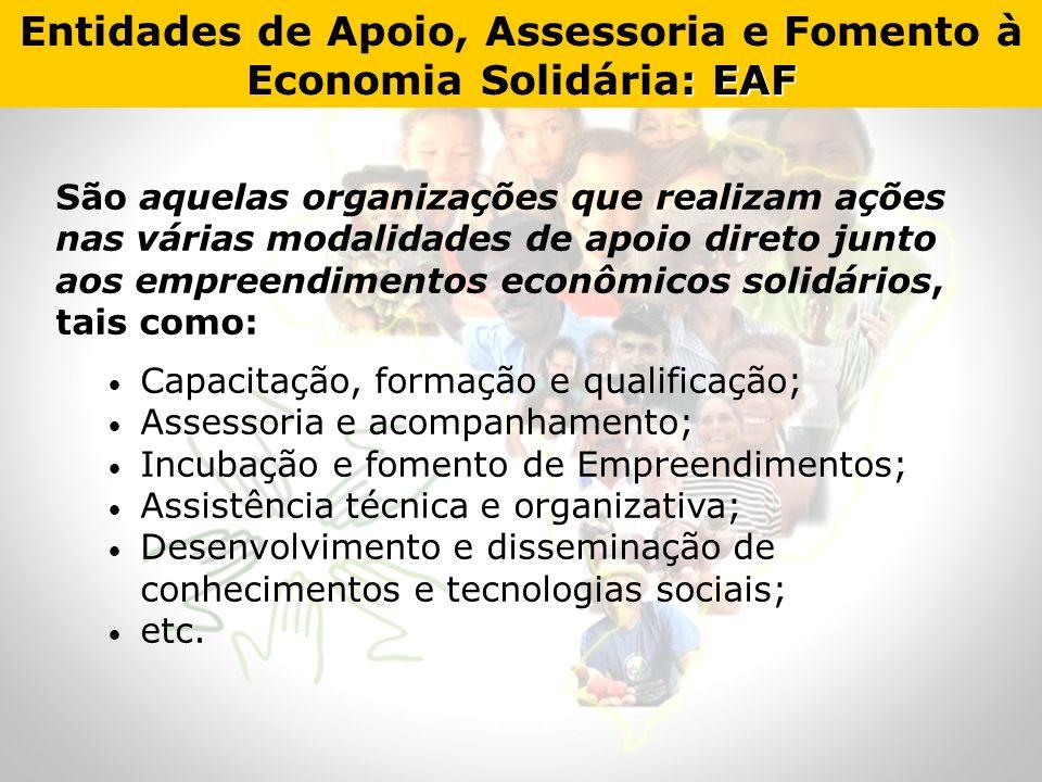 São aquelas organizações que realizam ações nas várias modalidades de apoio direto junto aos empreendimentos econômicos solidários, tais como: Capacit